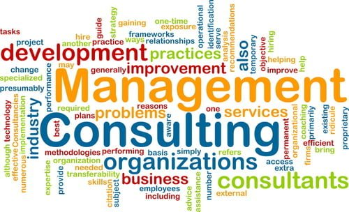 Paradigm Solutions Business & Management Consulting Services word cloud